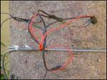 QT-2021 插針式植物莖流係統