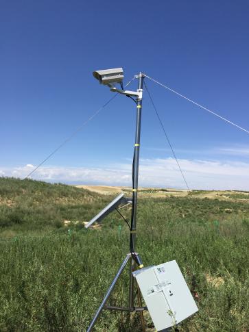 植物物候观测系统